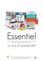 Expo Essentiel, Maison Internationale de Rennes, nov 2012