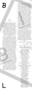 brochure-biennale-interno(G)