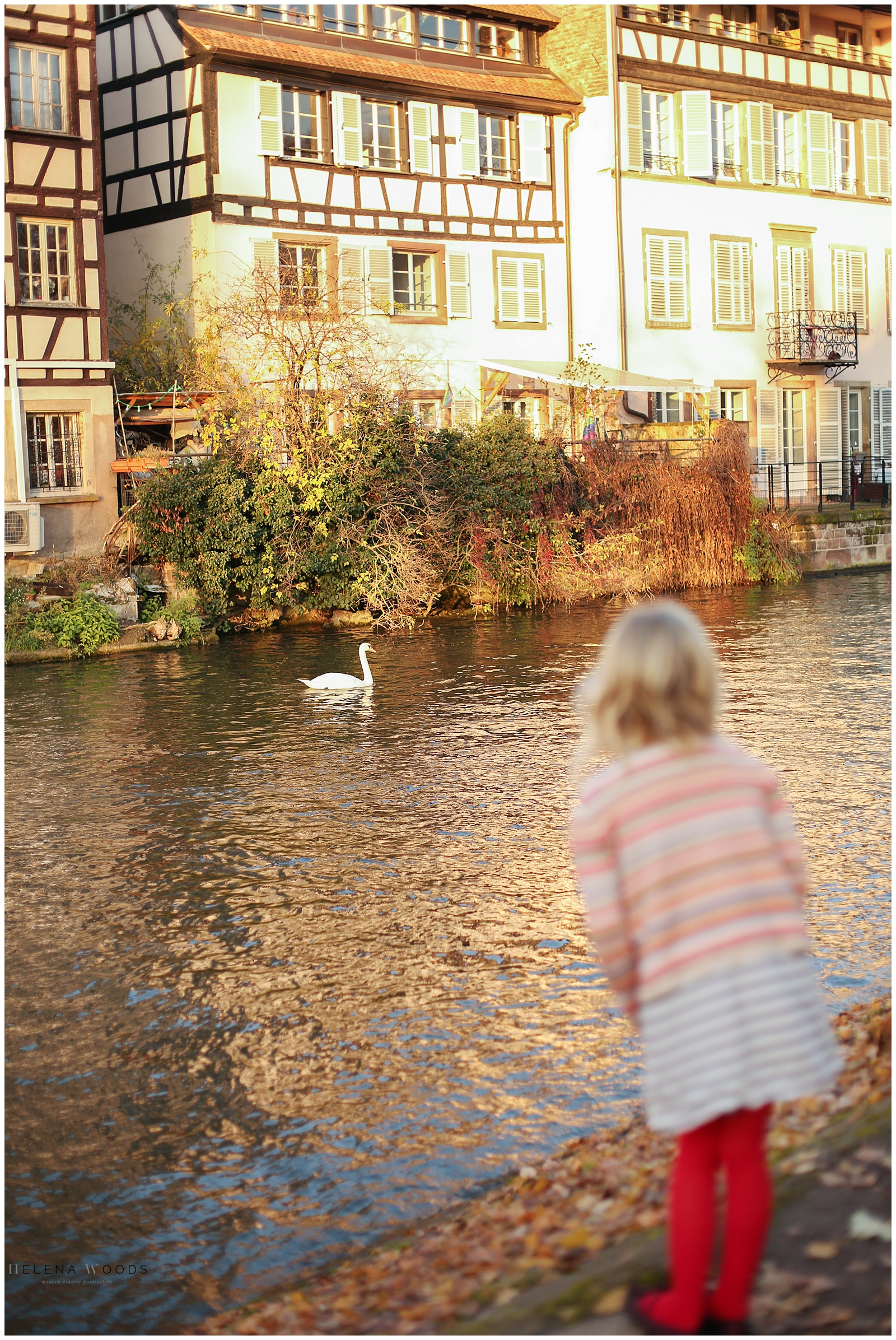 girl looking at swan in Petite France in Strasbourg France