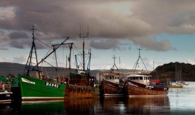 Fishing boats in Tobermory harbour Mull Scotland uk
