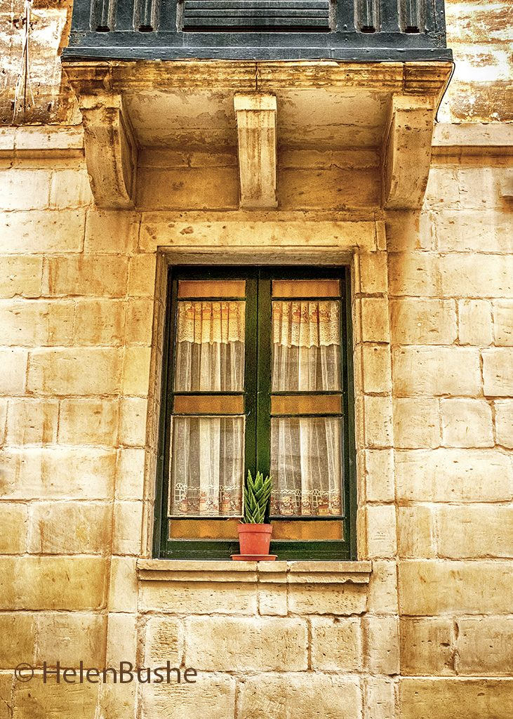 net curtain potted plant Malta