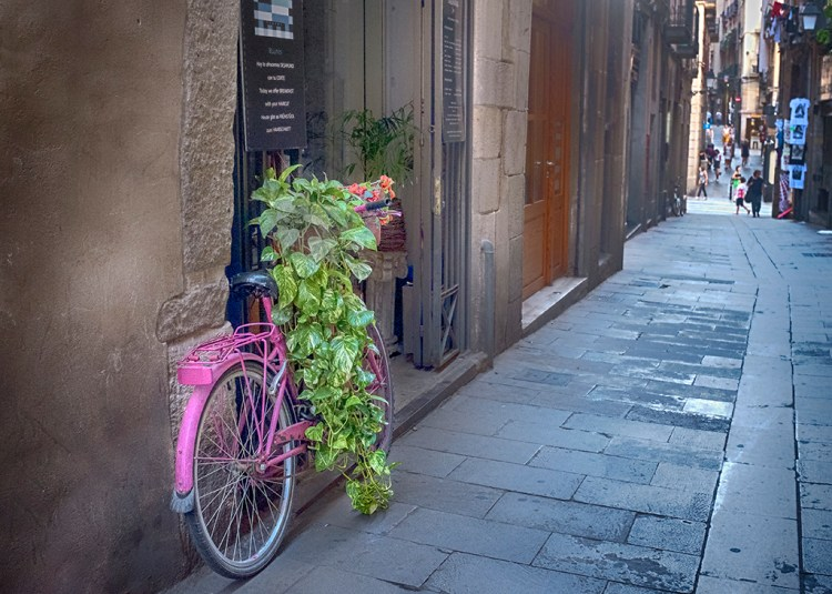 Pink and Green Barcelona
