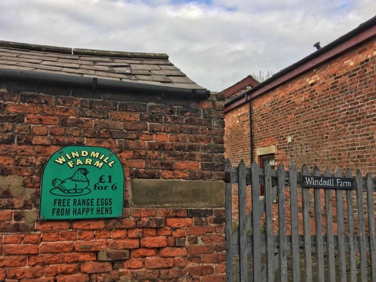 Eggs for Sale Clifton Windmill Farm