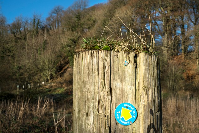 Ribble Way Signpost Brockholes Nature Reserve
