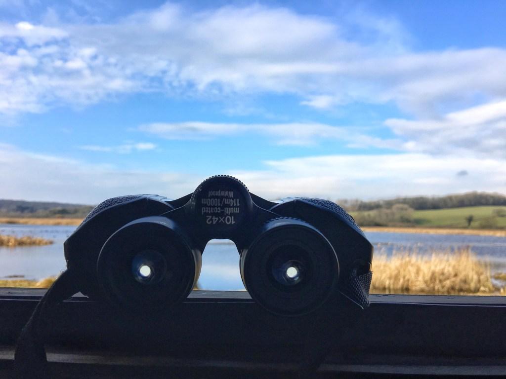 Binoculars RSPB Lower Hide birdwatching
