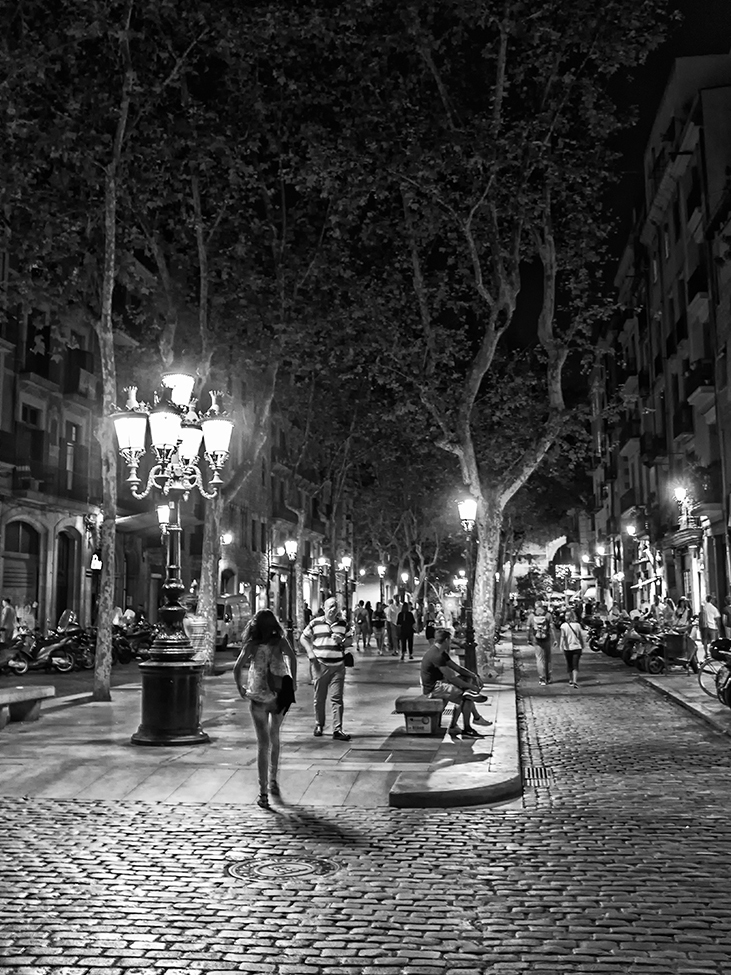 Night Lights In Barca monochrome Barcelona