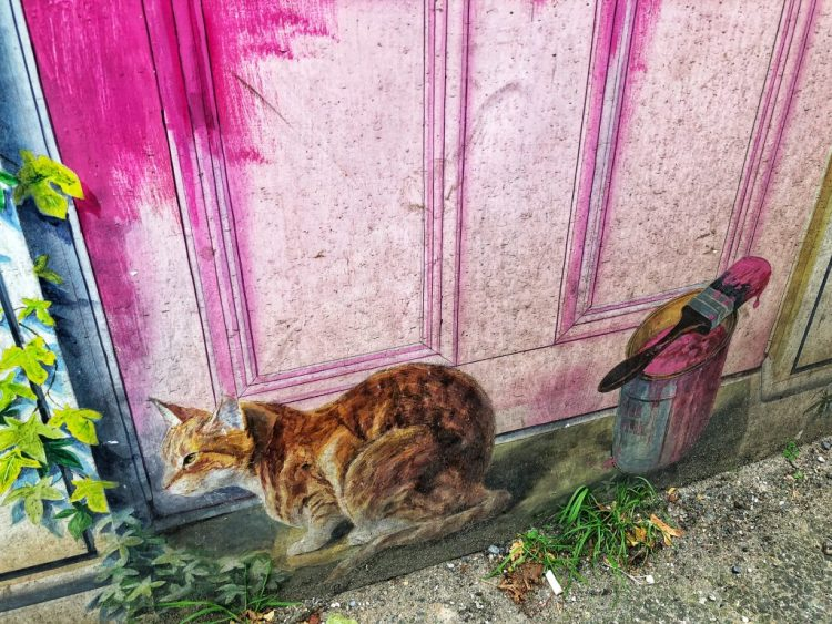 Knaresborough: An Illusory Cat