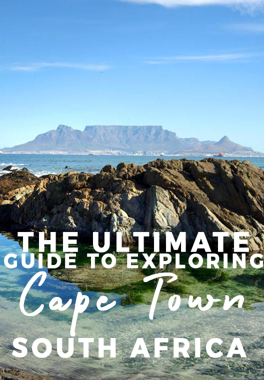 The Ultimate Wild Guide to Exploring Cape Town, South Africa