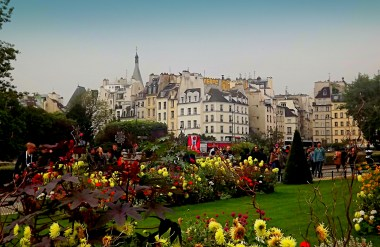 Well, it's a Paris photo again! There's a little garden just behind Notre Dame Cathedral that we were lucky enough to see in full bloom - turns out such warm colours lend themselves well to photographs!