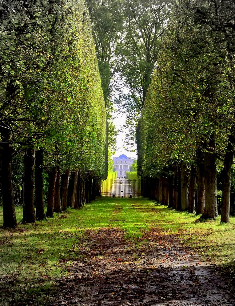 Versailles Gardens had so many incomparably intricate garden designs, but I do find myself looking back with the greatest fondness on views like this one. The simple but classic hedge leading your eyes straight to the grand abode in the distance. This particular view seemed so effortlessly pretty I had to take a picture!