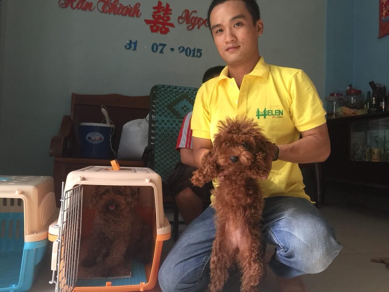 Lưu ý an toàn cho thú cưng trước khi vận chuyển chó mèo đi Mỹ Canada bằng máy bay