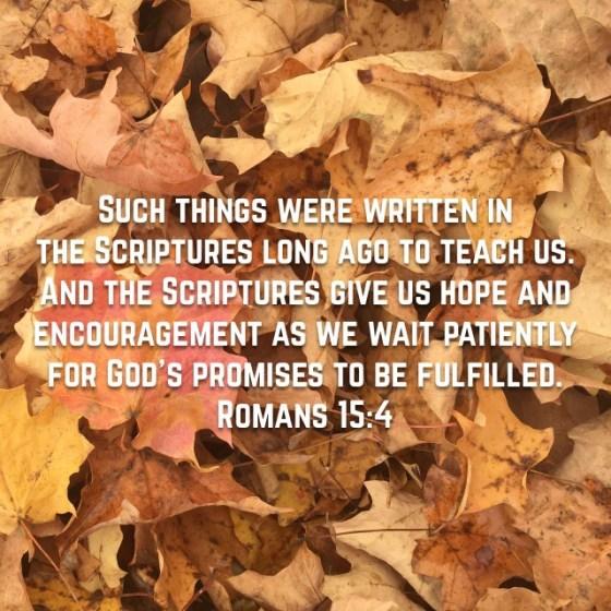 Romans 15:14