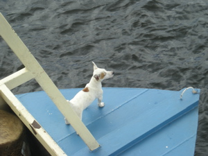 The Kafue Queen and Capt. Jack Russell (4/4)