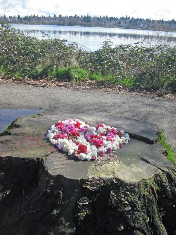Green Lake: heart-filled stump.
