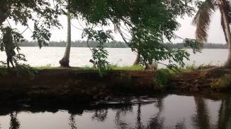 Backwaters9