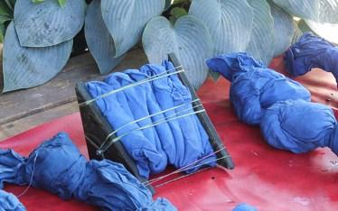 Shibori Indigo Dyeing
