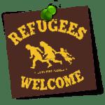 """Erfahrungsbericht: """"Deutschkurs für Asylbewerber"""""""