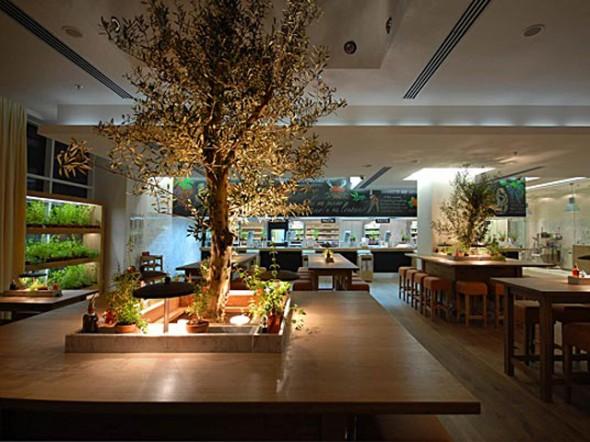 Binnenhuisarchitectuur en groen  Projectinrichting