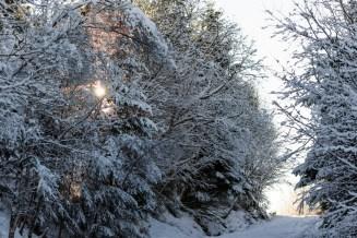 Snø!!