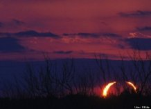 http://www.huffingtonpost.com/2012/05/20/solar-eclipse-pictures-photos-annular_n_1529805.html#s=999893
