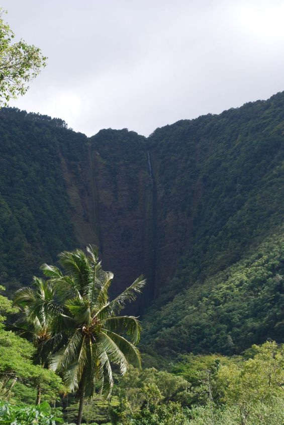 Hi'ilawe Falls, Hawaii's highest free-fall waterfall at 1200 feet. Unfortunately this was the closest to it we could come