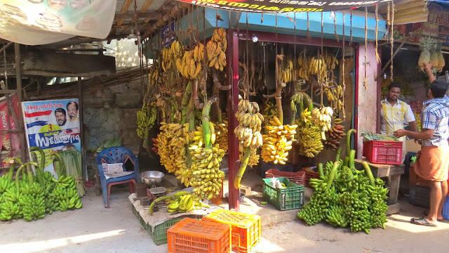 I Kerala finnes det over 50 forskjellige banantyper. Her fra et marked jeg besøkte i Thiruvananthapuram.