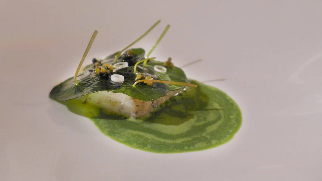 «Tredje stykke»: Rett 14: Slik blir piggvar-retten presentert. Nydelig stykke fisk med piggvarrand, ramsløk, vårløksringer og en deilig saus.