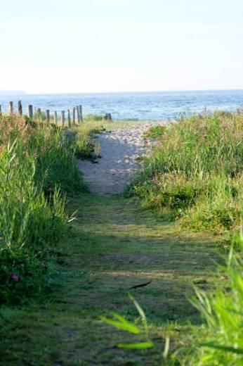 Stranden ved Molskroen har fin sandstrand.