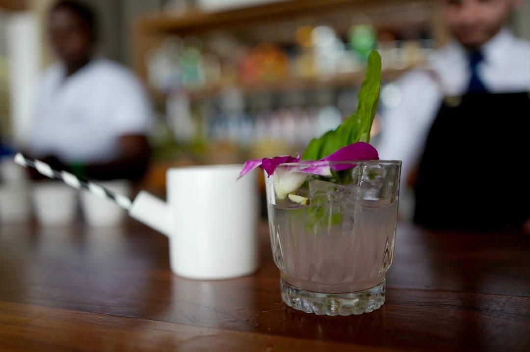 Antonios cocktails.