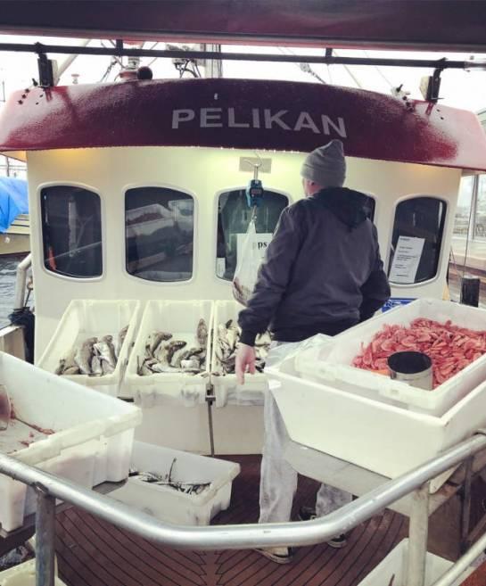 """Fiskebåten """"Pelikan"""" er på plass en iskald novemberdag."""
