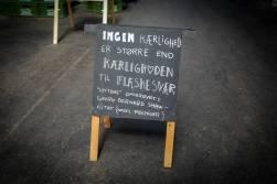 Odense_danmark_L1430476