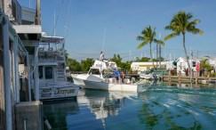 HelleValebrokk_Florida Keys_Florida_USA_Marathon_Key West_L1790609