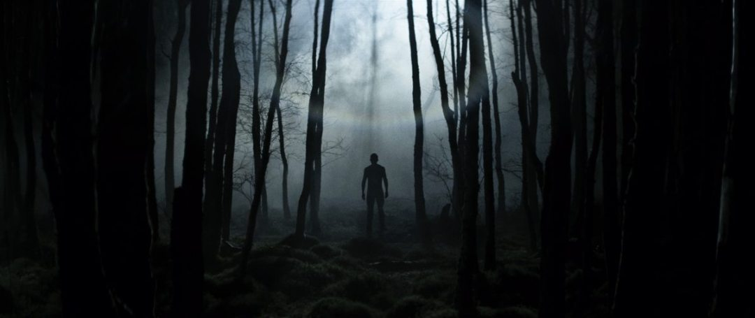 Lorcan Finnegan's 'Without Name' Hides Something in the Woods