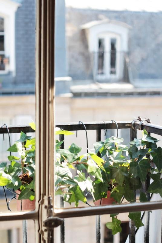 Bienvenue chez Louison // Hëllø www.hello-hello.fr