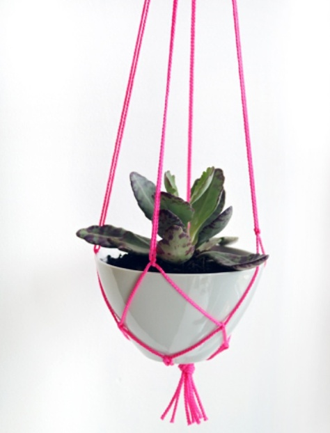 Un planter fluo