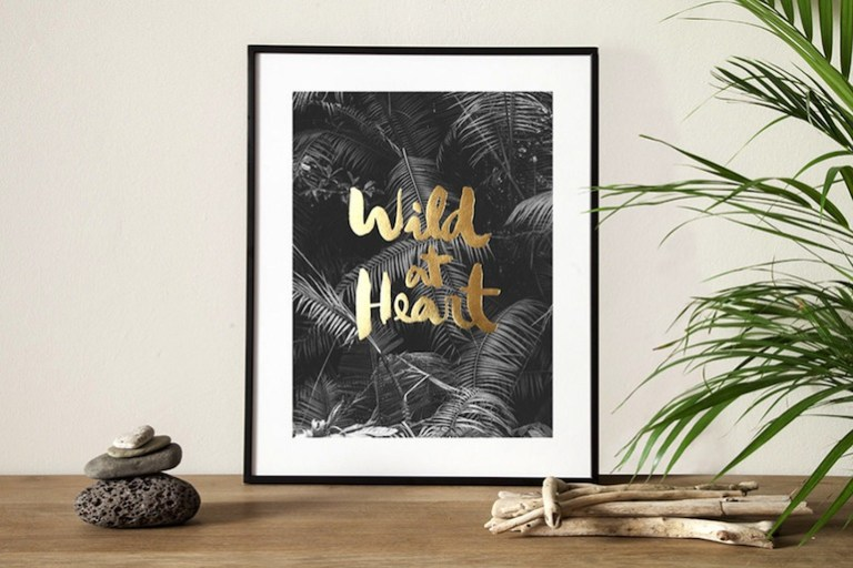 Congostudio Wild at heart