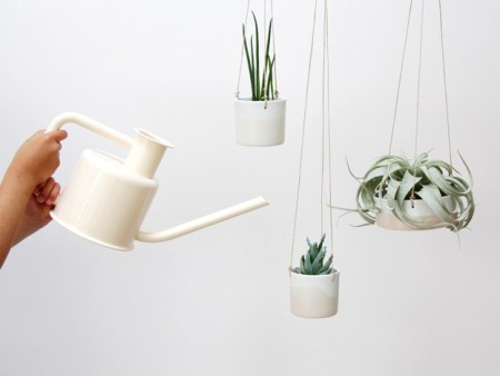 decorer-avec-des-plantes
