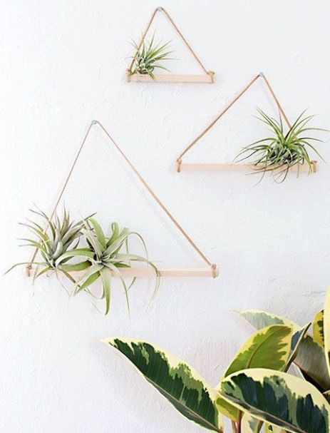 It-Plants Plantes Vertes Originales Airplant // Hëllø Blogzine blog deco & lifestyle www.hello-hello.fr #airplant #tillandsias
