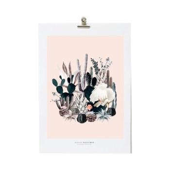 illustration-castus-maison-baluchon