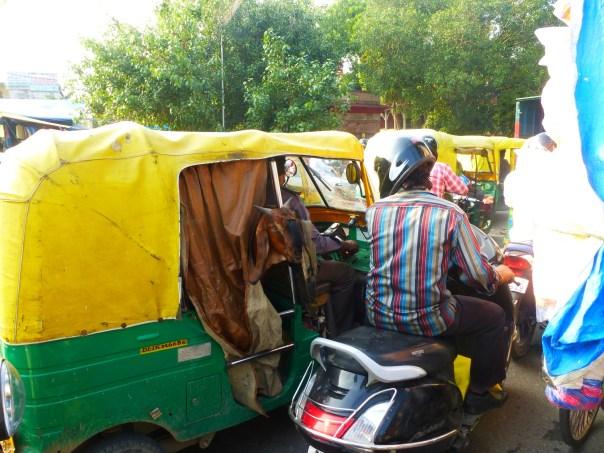 Delhi - 2013.10 Streets (36)