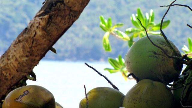 2014.03.04 - Coramoan Peninsula Island Hopping (105)
