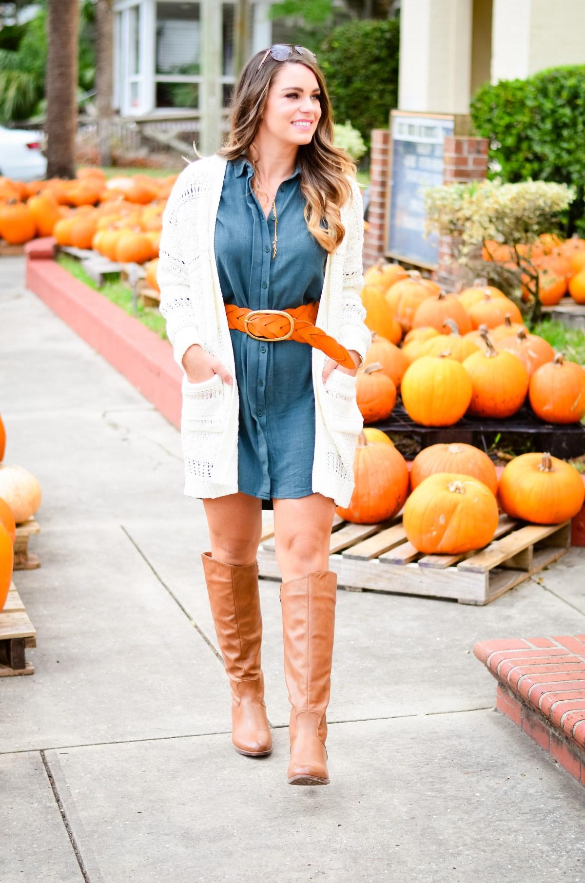 shirt-dress-pumpkin-patch-goldfinch-2
