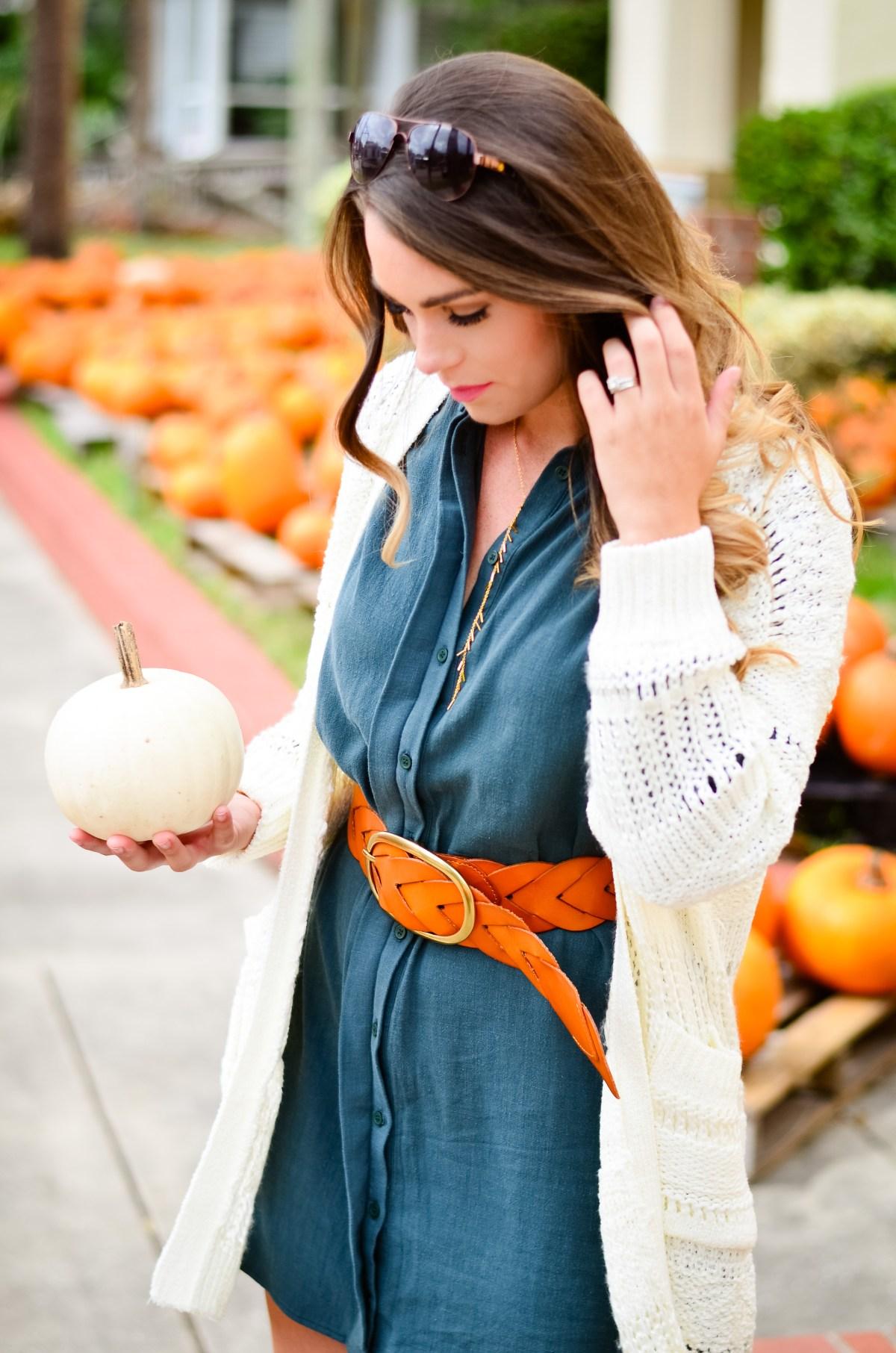 shirt-dress-pumpkin-patch-goldfinch-7