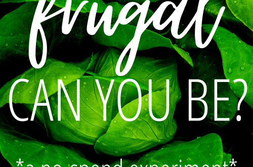 How frugal can you be? A no-spend experiment #frugalliving #extremefrugality #frugaltips #budgetingtips