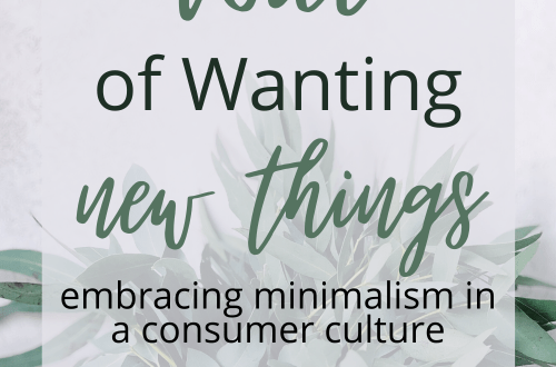 Quiet the Voice of Wanting New Things - Embracing Minimalism in a Consumer Culture