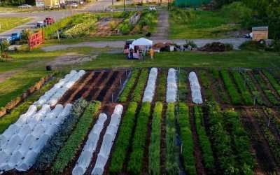 Urban Farming in Buffalo – Back to the Future
