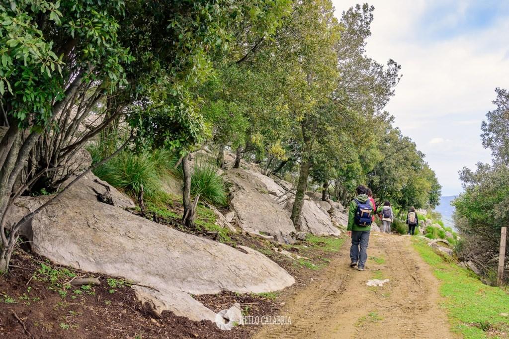 Trekking Monte Tre Pizzi, Aspromonte, Antonimina