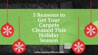 5 Reasons to Get Your Carpets Cleaned This Holiday Season ...