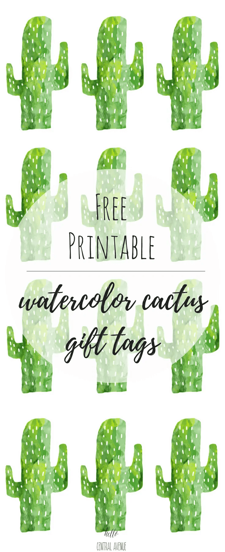 picture relating to Cactus Printable titled Totally free Printable Cactus Present Tags - Hello there Central Road