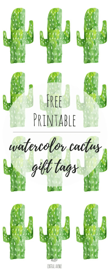 Here's a freebie that I think you all will enjoy!  Below you will find six FREE printable cactus gift tags ready for printing!